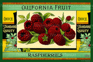 California Fruit Raspberries 1915 - 018