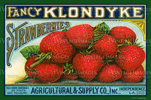 Klondyke Strawberries 1915 - 029
