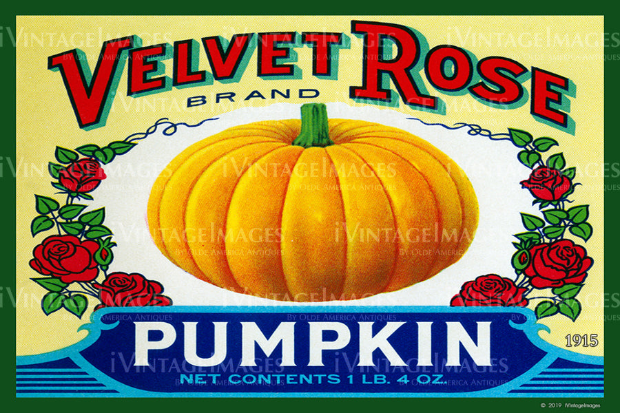 Velvet Rose Pumpkin 1915 - 036
