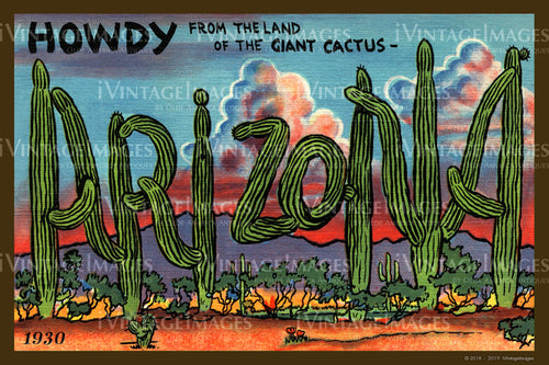 Arizona Large Letter Postcard 1930 - 004