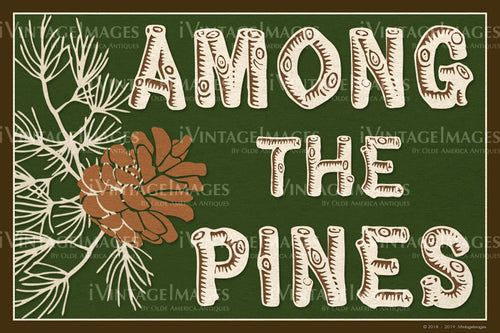 Among the Pines - 014