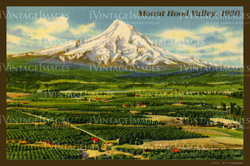Mount Hood Valley Postcard 1930 - 003
