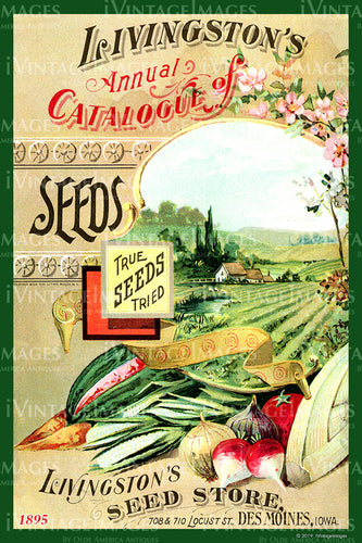 Livingstons Vegetables 1895 - 004