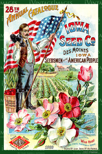 Iowa Vegetables 1900 - 006