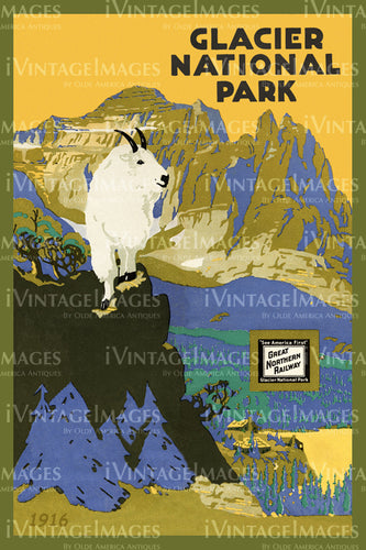 1916 Glacier National Park Mountain Goat