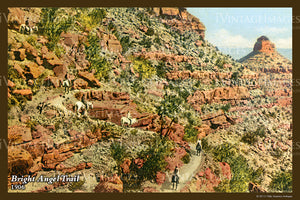 Grand Canyon Postcard 1906 - 51