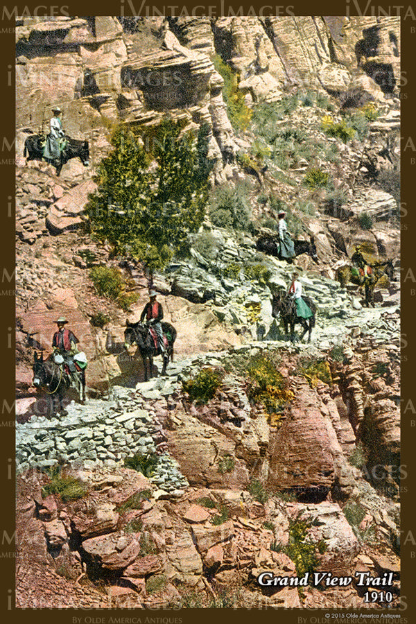 Grand Canyon Postcard 1910 - 54