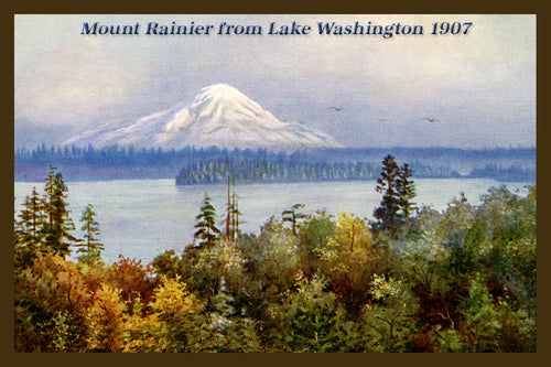 Mount Rainier Postcard 1907 - 10