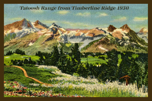 Mount Rainier Postcard 1930 - 11