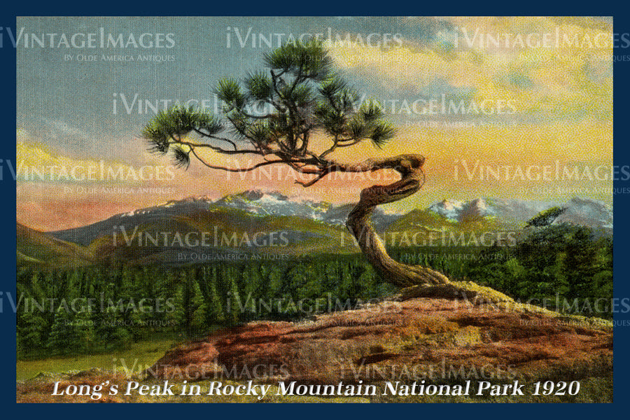 Rocky Mountain Postcard 1920 - 14