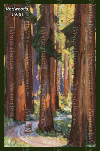 Redwood Postcard 1930 - 3