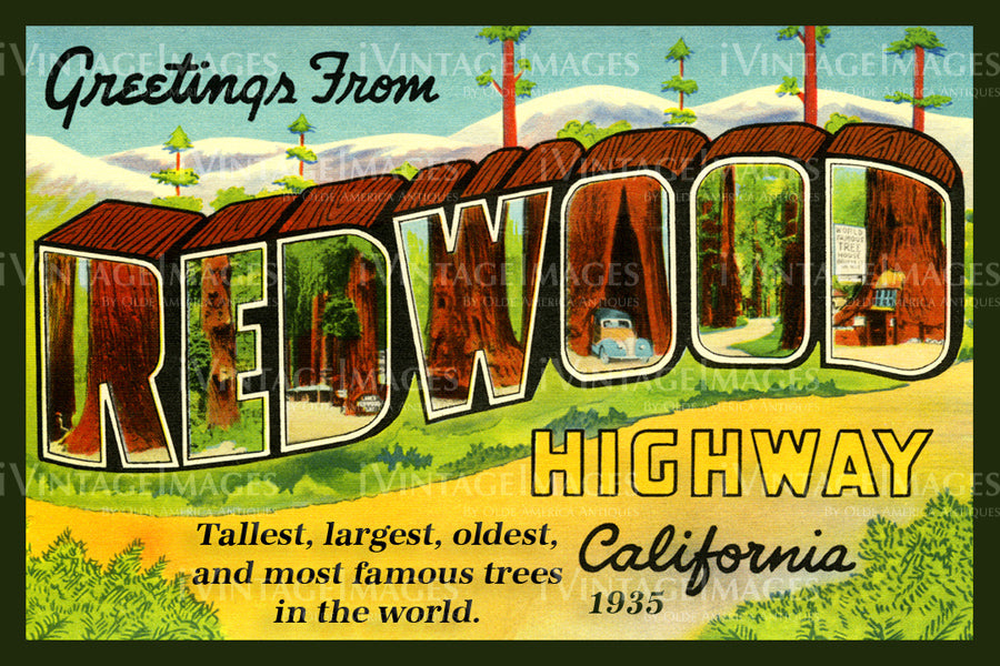 Redwood Postcard 1935 - 5