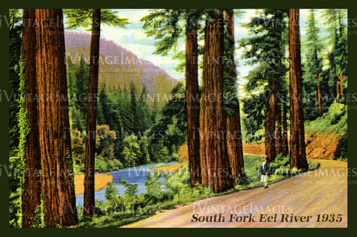 Redwood Postcard 1935 - 6