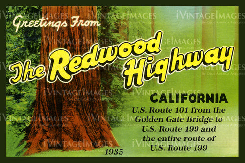 Redwood Postcard 1935 - 9
