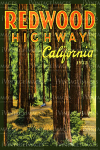 Redwood Postcard 1935 - 13