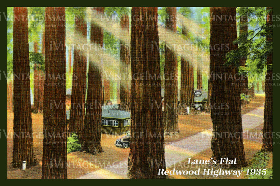 Redwood Postcard 1935 - 14