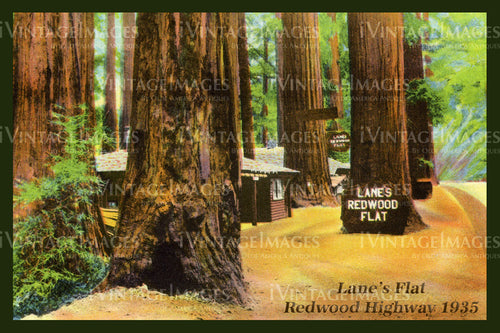 Redwood Postcard 1930 - 18