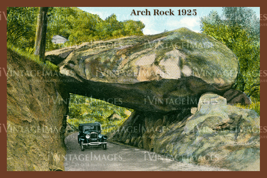Sequoia Postcard 1925 - 11