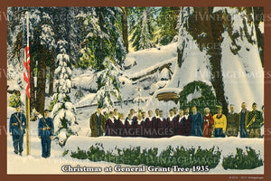 Sequoia Postcard 1935 - 26