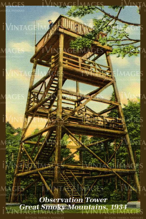 Great Smoky Mountains Postcard 1934 - 03