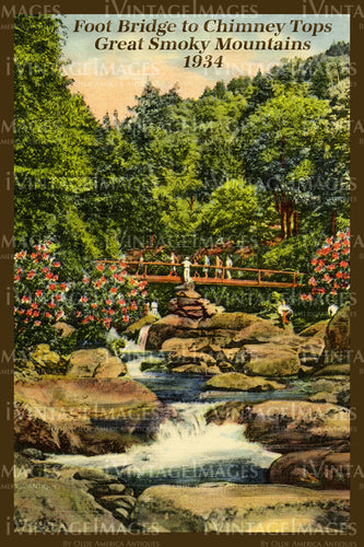 Great Smoky Mountains Postcard 1934 - 11