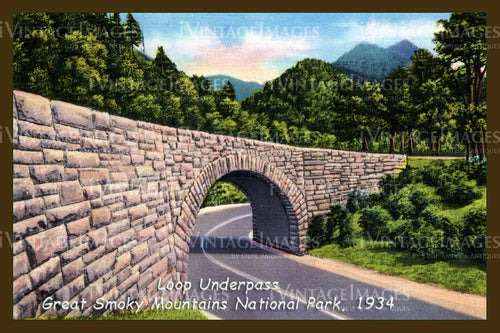 Great Smoky Mountains Postcard 1934 - 15