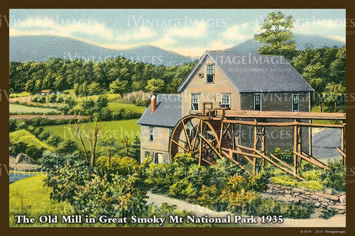 Great Smoky Mountains Postcard 1930 - 25