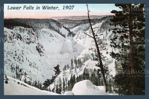 Yellowstone Postcard 1908 - 63
