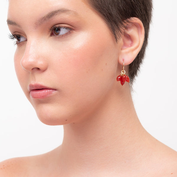 Fabi Dangle Earrings - Cornelian - TARBAY