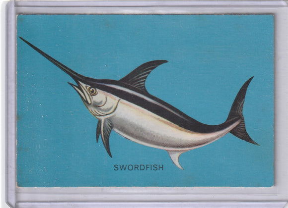 1962 Parkhurst Fish (V339-19) card #14 Swordfish
