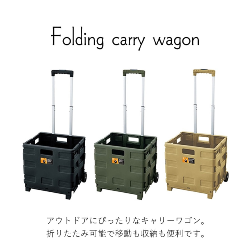 FOLDING CARRY WAGON 30L