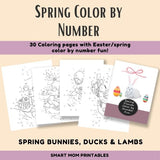 Spring Friends Color by Number Pages