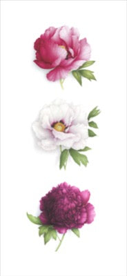 Triptych of 3 peonies vertical
