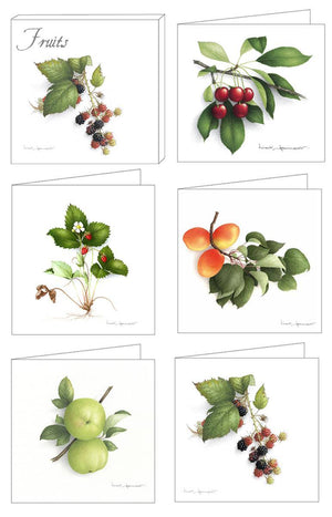 Box of 5 Cards - Fruits