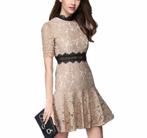 Beige Lace Knee Length Dress