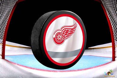 Detroit Red Wings NHL Hockey Puck Diamond Painting