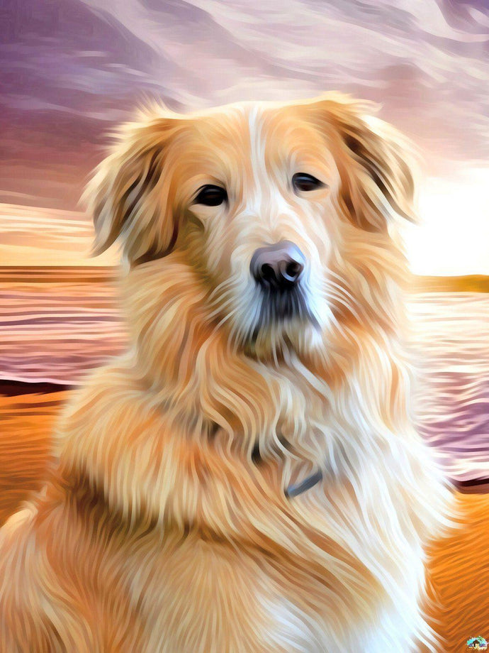 Golden Retriever Dog Diamond Painting