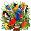 Load image into Gallery viewer, Group Of Birds Diamond Painting