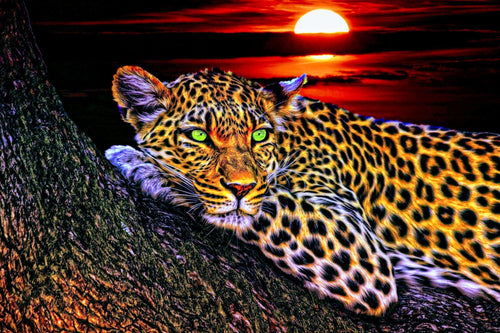 Leopard Diamond Painting