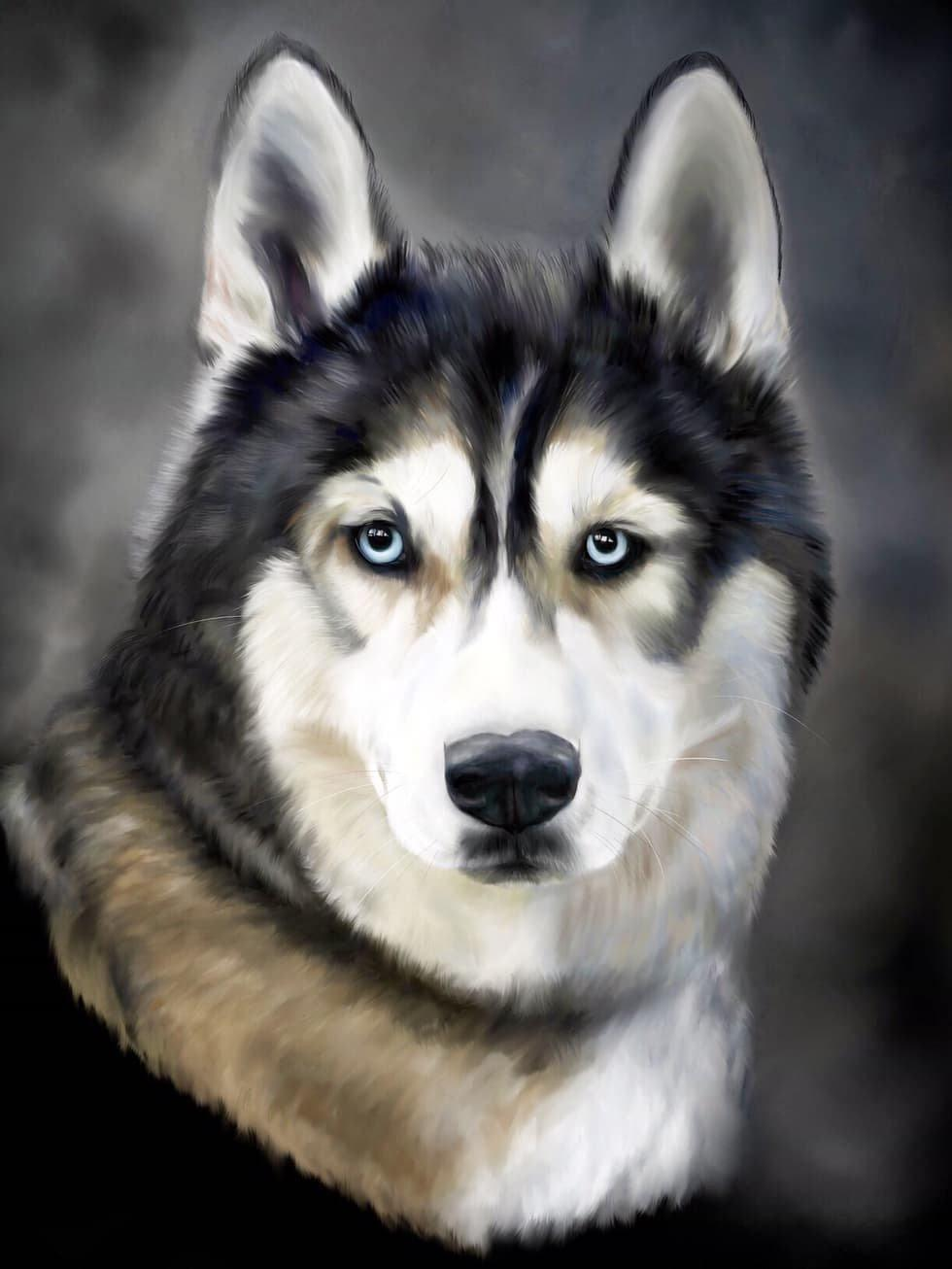 Samoyed Husky Diamond Painting