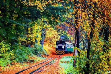 Train In The Fall Diamond Painting