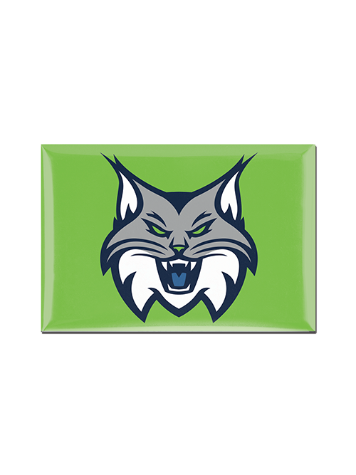 Minnesota Lynx Full Face 2x3 Magnet
