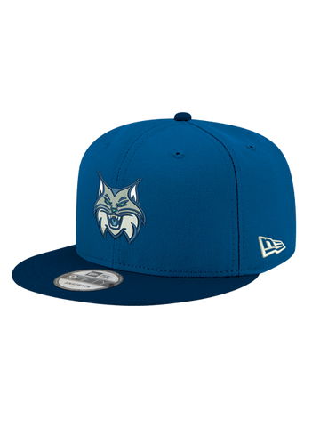 Minnesota Lynx 39THIRTY Primary Logo Cap