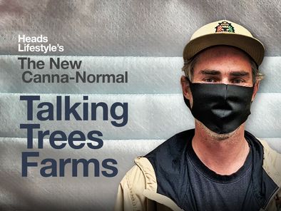 The New Canna-Normal: Talking Trees Farms