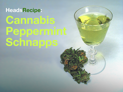HeadsRecipe: Cannabis Peppermint Schnapps