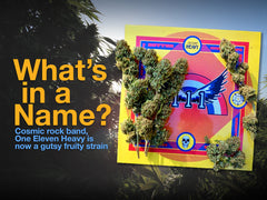 What's in a name? 111 HEavy Strain