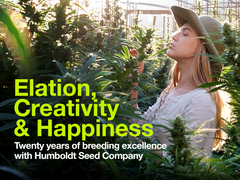 Heads Lifestyle: Humboldt Seed Company