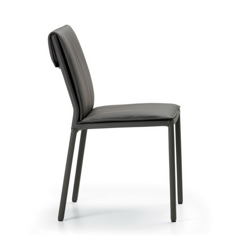 Isabel Low Back Side Chair