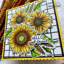 Load image into Gallery viewer, Sweet Sunflowers | Honey Cuts