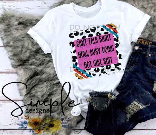 Cant Talk Right Now, Busy Doing Hot Girl Shit T-shirt, Humor Graphics Tees, Custom Raglans